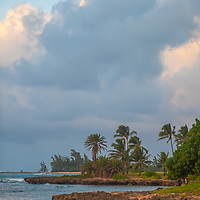 Palm Trees line shores of the northwest shores of Oahu, Hawaii.