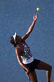 TENNIS_US_Open_2010-09-01