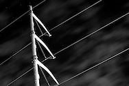 Power lines over Leavenworth Street 2007.<br /> Photo by Chris Machian