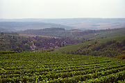 A view over the vineyards and village of Irancy, northern Bourgogne