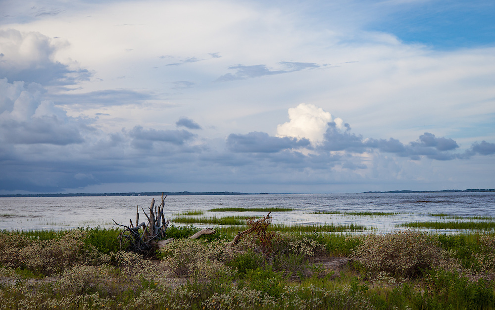 Ocean meets marsh at Baygall Beach on the heel of Hilton Head Island.