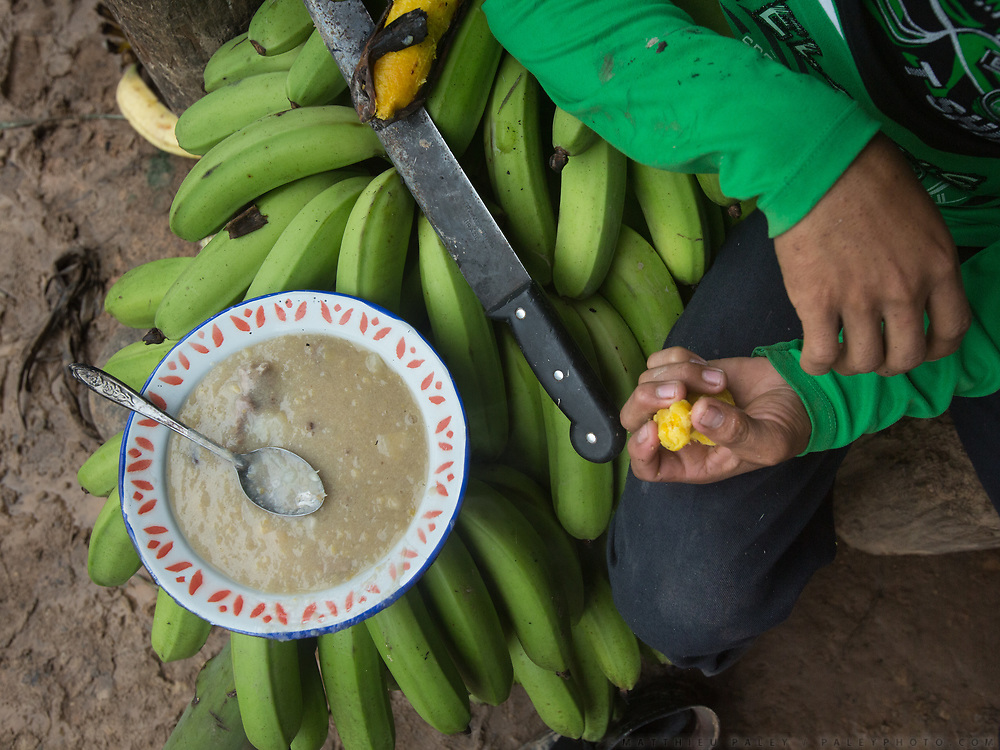 Unripped shaved plantain is boiled with salt and a piece of meat from a collared peccary.