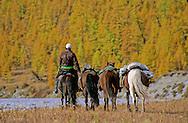 Mongolian Horsemen<br /> Lake Hovsgol, Mongolia