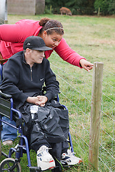Man with learning disability on trip to farm with carer pointing to animals