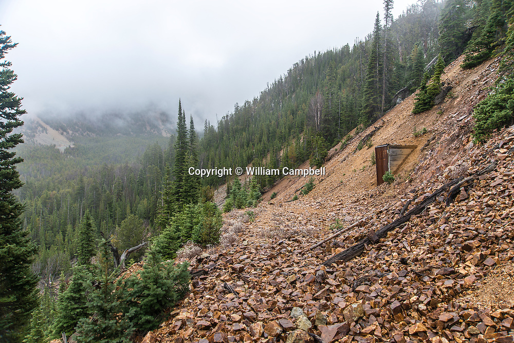 Narrow, unmaintained, old  mining road and abandoned gold mine shaft in the historic St. Julian mining district. Gold was mined here from 1887 until the early 1900's.