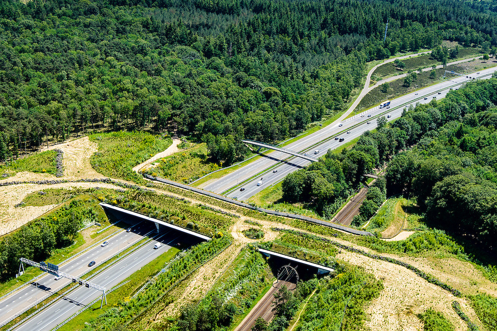 Nederland, Noord-Holland, Hilversum, 09-06-2016;<br /> Ecoduct Zwaluwenberg, over A27 en spoorlijn Utrecht - Hilversum, Ecocorridor. Aangelegd om ecologische versnippering tegen te gaan.<br /> Ecoduct Zwaluwe Berg, motorway A27 and railway Utrecht - Hilversum, Ecocorridor. Build to counteract ecological fragmentation.<br /> <br /> luchtfoto (toeslag op standard tarieven);<br /> aerial photo (additional fee required);<br /> copyright foto/photo Siebe Swart