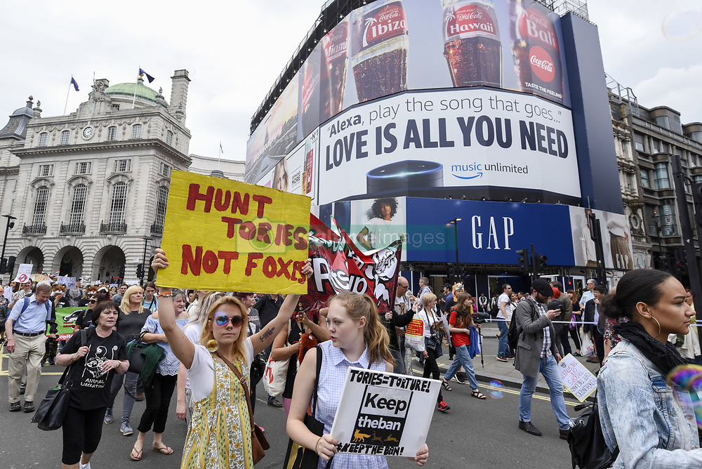 May 29, 2017 - London, UK - London UK. Demonstrators stage an ''Anti-Hunting March'' in central London, marching from Cavendish Square to outside Downing Street.  Protesters are demanding that the ban on fox hunting remains, contrary to reported comments by Theresa May, Prime Minister, that the 2004 Hunting Act could be repealed after the General Election. (Credit Image: © Stephen Chung/London News Pictures via ZUMA Wire)