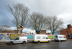 © Licensed to London News Pictures; 02/11/2020; Bristol, UK. File picture dated 14/03/2020 showing 3 Norway Maple trees; Campaigners for the Save The M32 Maples Campaign are dismayed after contractors working for a developer from 6am this morning cut down 2 of the 3 maple trees where the campaigners had built tree houses to protect the 3 remaining Norway Maple trees on Lower Ashley Road in the St Pauls area of Bristol close to the M32 motorway. Several people from the campaign are occupying the remaining tree and tree house. The campaign wanted the trees kept to enhance the environment and help remove pollution in what is a traffic congested area. The campaign asked the police Serious Fraud Unit to investigate allegations of a fraudulent Bristol City Council giveaway of £500,000 of public property, including the trees. Campaigners have obtained documents which show the mature trees fall outside the boundary of the land on Lower Ashley Road owned by John Garlick, and they claim the strip of land the three remaining protected trees are on belongs to Bristol City Council's highways department. Bristol City Council denies the claim and says the existing maps are inaccurate and that the trees are not on council owned land as it was all sold off by the council. Two of five trees originally there were felled on New Year's Eve, and campaigners chained themselves to remaining trees to prevent them being cut down. Photo credit: Simon Chapman/LNP.