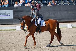 Hanzon Theo, NED, Harvard<br /> Nederlands Kampioenschap dressuur<br /> Ermelo 2020<br /> © Hippo Foto - Sharon Vandeput<br /> 20/09/2020