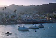 Boat and yachts anchored in Avalon Harbor at sunset, Catalina Island, California