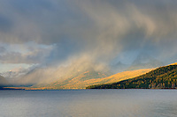 Curtains of rain showers glow in the evening light above Lake McDonald, Glacier National Park Montana USA