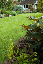 Lawn and spring borders at Eastgrove Cottage. Rheum palmatum 'Atrosanguineum' in the foreground