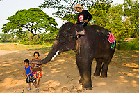 Thai kids playing with an elephant, Elephantstay (Elephant village), Ayutthaya, near Bangkok, Thailand