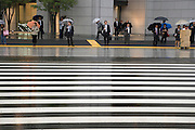 businesspeople waiting for a zebra crossing during a rainy day
