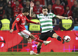 February 7, 2019 - Na - Lisbon, 06/02/2019 - SL Benfica received this evening the Sporting CP in the Stadium of Light, in game the account for the first leg of the Portuguese Cup 2018/19 semi final. Jo√£o Félix e Coates  (Credit Image: © Atlantico Press via ZUMA Wire)