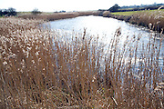 Sunshine on water of drainage ditch Boyton Marshes Suffolk