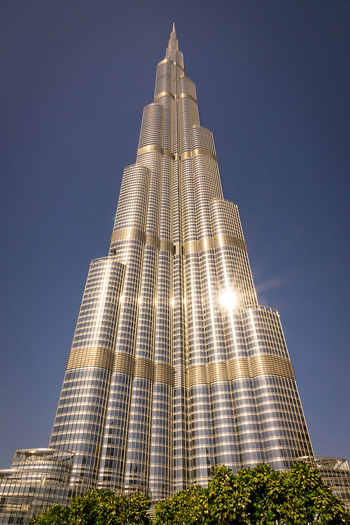Low angle view of the famous Burj Khalifa, the tallest building in the world, as of 2021 in Dubai, United Arab Emirates with shrubs in the foreground