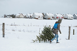 Young man carrying Christmas tree in snowy landscape and village in the background, Bavaria, Germany