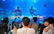 "(CHINA OUT, FINLAND OUT)<br /> <br /> TIANJIN, CHINA - SEPTEMBER 19: (CHINA OUT)<br /> <br /> Music Show Underwater<br /> Musicians perform in water at Haichang Polar Ocean World on September 19, 2013 in Tianjin, China. The ocean park formed the ""ocean band"" ahead of Mid-Autumn Festival to attract visitors. The music for the band's shows will be pre-recorded. <br /> ©Exclusivepix"