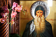 Icon of God and orchids at Roman Catholic Cathedral of St Dionysius. Built in 1865, this stone basilica displays an interesting portico, resting upon a marble colonnade. The evocative interior reveals three separate naves with an abundance of marble columns and haunting frescoes. Athens is the capital and largest city of Greece. It dominates the Attica periphery and is one of the world's oldest cities, as its recorded history spans around 3,400 years. Classical Athens was a powerful city-state. A centre for the arts, learning and philosophy.