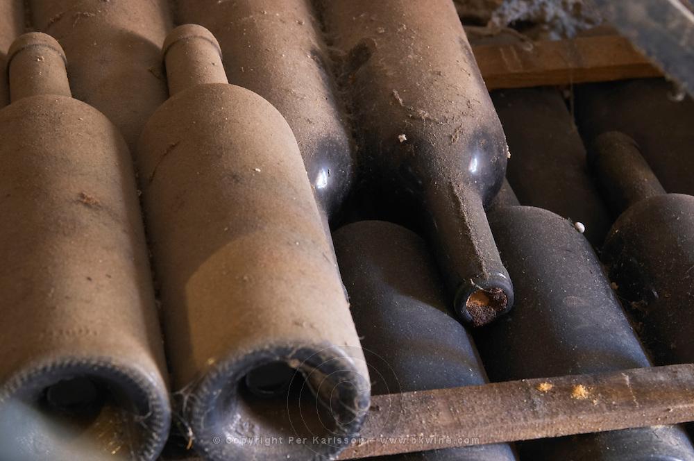 Piles of old bottles aging in the cellar, detail of dusty bottles sur lattes on wooden sticks Chateau Vannieres (Vannières) La Cadiere (Cadière) d'Azur Bandol Var Cote d'Azur France