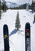 Skis on a chairlift frame a spruce tree in the Prospect Basin at Telluride on March 14, the last day of the 2019-2020 season. The governor shut down Colorado ski resorts, due to covid-19, that evening.
