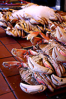 Dungeness Crabs at Fisherman's Wharf, San Francisco