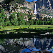 Spectacular Yosemite Falls reflect in a flooded meadow in Yosemite National Park, CA.
