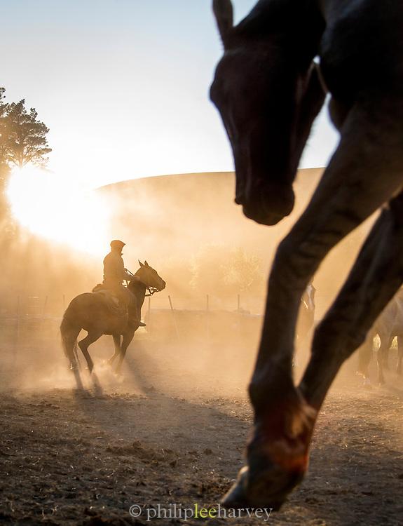 Gaucho on horseback, Huechahue Ranch, Northern Patagonian Lake District, Argentina, South America