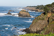 The Pacific Ocean cuts sea stacks from rocky coast at Mendocino, California, USA.