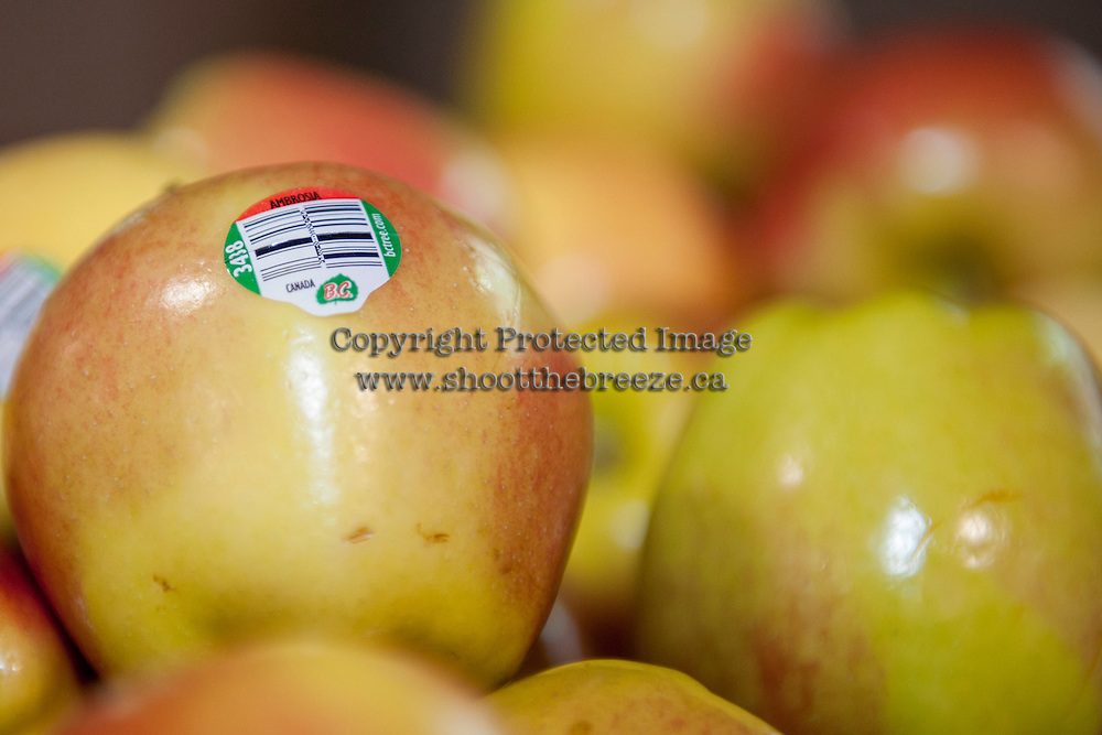 KELOWNA, CANADA - FEBRUARY 10: BC Tree Fruits apples on display on February 10, 2017 at Prospera Place in Kelowna, British Columbia, Canada.  (Photo by Marissa Baecker/Shoot the Breeze)  *** Local Caption ***