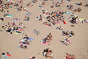 Nederland, nijmegen, 25-6-2020 Mensen trekken massaal naar de oevers van de waal en de spiegelwaal in het rivierpark aan de overkant van Nijmegen . De warmte, hoge temeratuur,  drijft mensen naar het water  . Het is verboden in de rivier te zwemmen vanwege de stroming het het drukke scheepvaartverkeer .  . Foto: Flip Franssen