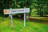 France, Pyrénées-Atlantiques (64), Pays Basque, Larrau, la forêt d'Irati // France, Pyrénées-Atlantiques (64), Basque Country, Larrau,  the Irati forest