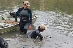 Jemima Stratford Releasing Leopard Shark