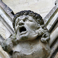 Europe, Great Britain, England, Salisbury. The Salisbury Cathedral architectural detail- head.