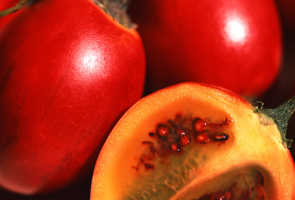 Close up selective focus photograph of a few raw Tamarillos with one cut open