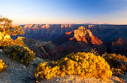 View South from Cape Royal to South Rim, North Rim, Grand Canyon National Park, Arizona..Subject photograph(s) are copyright Edward McCain. All rights are reserved except those specifically granted by Edward McCain in writing prior to publication...McCain Photography.211 S 4th Avenue.Tucson, AZ 85701-2103.(520) 623-1998.mobile: (520) 990-0999.fax: (520) 623-1190.http://www.mccainphoto.com.edward@mccainphoto.com