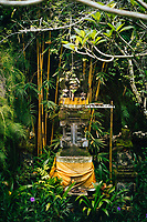 A small altar in an overgrown jungle near GWK Cultural Park in Bali, Indonesia.