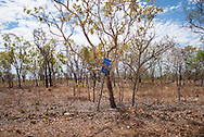 """A road sign that reads """"Fatigue Kills Rest Ahead"""" mysteriously leans against a tree several meters off the highway just outside Kakadu National Park in Australia's Northern Territory<br /> <br /> (September 7, 2017)"""