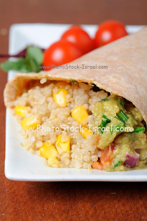 Organic Health Food - cooked Quinoa Chenopodium quinoa AKA Goosefoot;