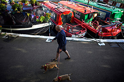 © Licensed to London News Pictures. 04/05/2019. London, UK. A man walks his dog past Canal boats on the tow path during the Canalway Cavalcade festival in Little Venice, West London on Saturday, May 4th 2019. Inland Waterways Association's annual gathering of canal boats brings around 130 decorated boats together in Little Venice's canals on May bank holiday weekend. Photo credit: Ben Cawthra/LNP