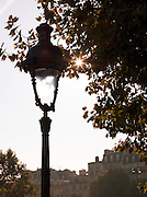 Street lamp in Paris, France