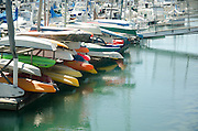 Rowboats Docked at the Oceanside Harbor