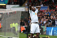Tammy Abraham of Swansea city reacts after he misses a chance to score in the 2nd half.  Premier league match, Swansea city v Newcastle Utd at the Liberty Stadium in Swansea, South Wales on Sunday 10th September 2017.<br /> pic by  Andrew Orchard, Andrew Orchard sports photography.