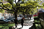 AUSTIN, TX –JANUARY 2013: Scenes of life and culture in Austin, Texas.