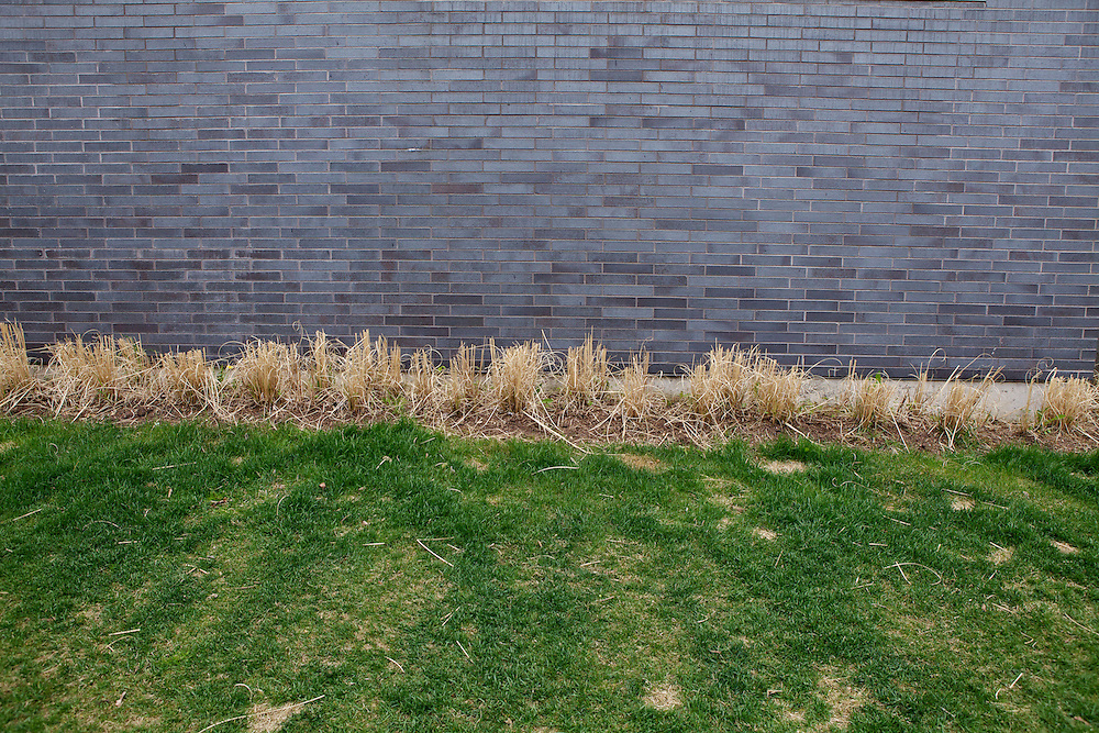 Landscaping along side of townhouse condominiums at Richmond West, Toronto.