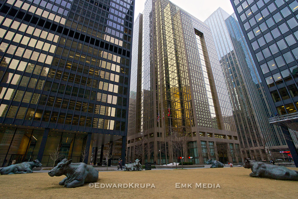 """The Pasture"", a group of 7 life-size bronze cows by Canadian artist Joe Fafard in the heart of Toronto's financial district."
