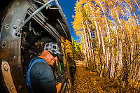 Train engineer in the steam locomotive, with a background of aspen trees in peak autumn color on the Cumbres & Toltec Scenic Railroad train on the 64 mile run between Chama, New Mexico and Antonito, Colorado. The railroad is the highest and longest narrow gauge steam railroad in the United States with a track length of 64 miles. The train traverses the border between Colorado and New Mexico, crossing back and forth between the two states 11 times. The narrow gauge track is 3 feet wide. It runs over 10,015 ft (3,053 m) Cumbres Pass.
