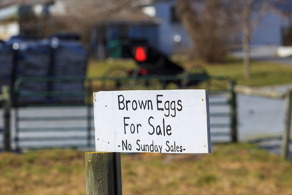 A Brown Eggs For Sale sign attached to a fence post at an Amish farm in Lancaster ounty, PA.