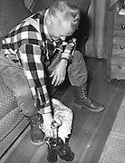 """Gordon MacQuarrie with his English Springer spaniel, """"Stuffy McGuffy"""" at the cabin, ca. 1948."""